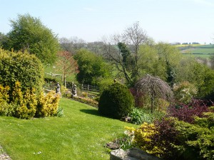 Manton Lodge garden lawns