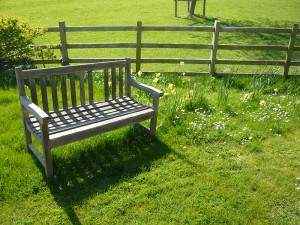 Bench seat in the sun
