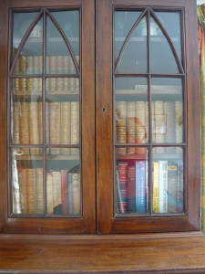Garden apartment bookcase